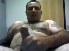 bear daddy jo
