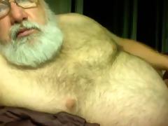 silver dad bear